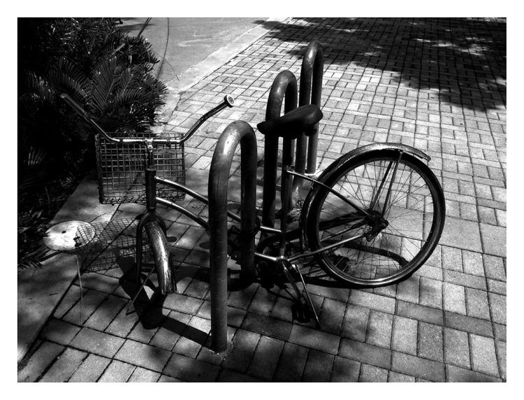 Moran_pedals